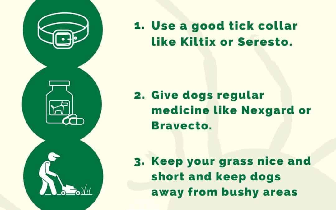 4 Ways to Stop Tick Sickness- Ehrlichiosis Poster