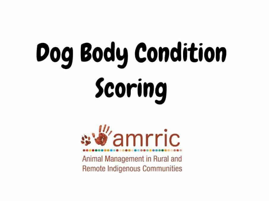 Body Condition Score, Skin Scores, and Tick Scores