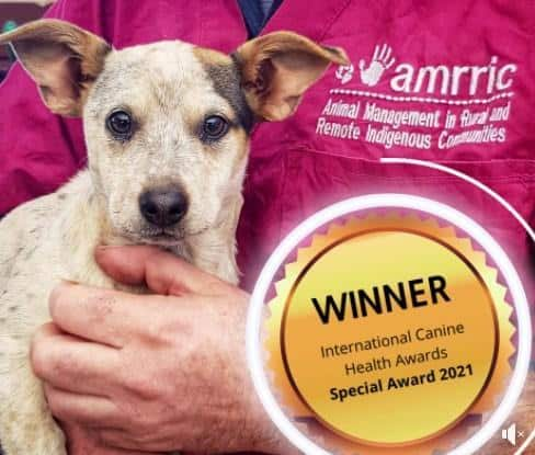 Winner: International Canine Health Awards Special Award 2021